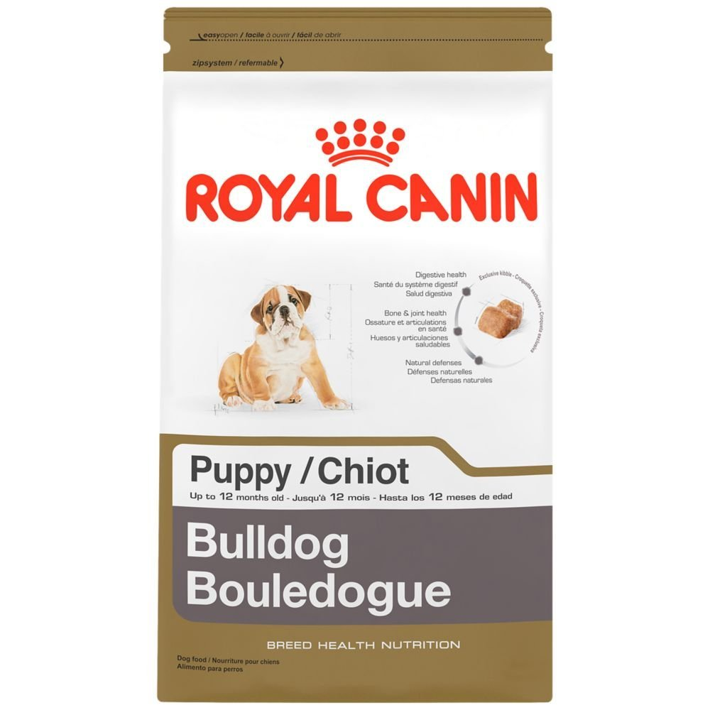 Bulldog puppy food