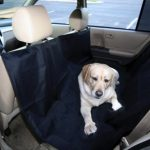 Dog Auto Travel Back Seat