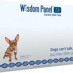 Wisdom Panel 2.0 Breed Identification DNA Test Kit