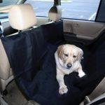 Dog Auto Travel Back Seat